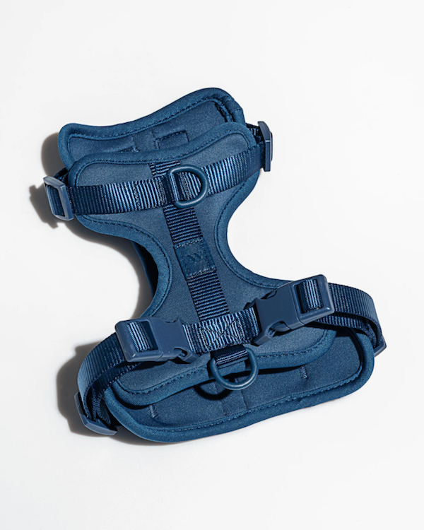 WILD ONE CUSHIONED HARNESS NAVY BLUE