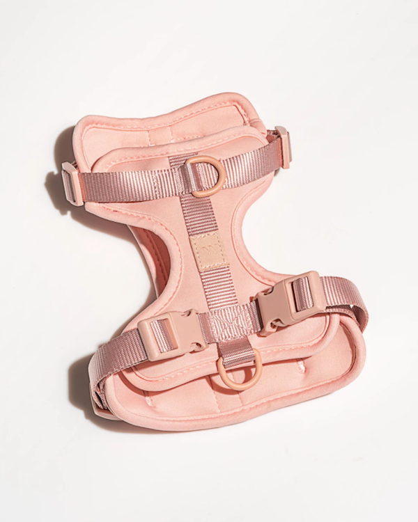 WILD ONE CUSHIONED HARNESS BLUSH