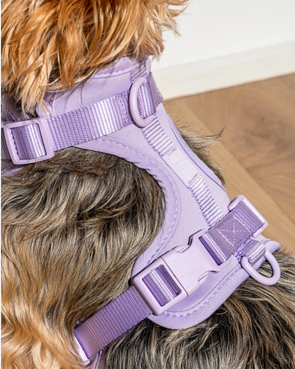 WILD ONE CUSHIONED WOVEN HARNESS LILAC