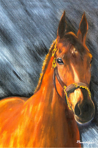 Americn Pharaoh Triple Crown Winner Giclee Print on Fine Art Paper Canvas or Wood by Brenda Salyers by Brenda Salyers - BSAhomegoodies.com