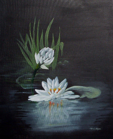 Water Lily Giclee Print on Fine Art Paper Canvas or Wood by Brenda Salyers Arts - BSAhomegoodies.com