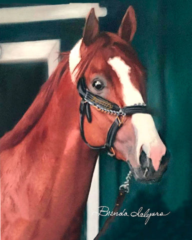 Justify,  Kentucky Derby, Belmont, Preakness Winner Giclee Prints on Canvas Paper or Wood by Brenda Salyers Arts - BSAhomegoodies.com