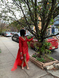 Ruby red Dress Gown