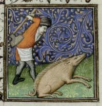 Swineherd using the butt of an axe to kill a pig.