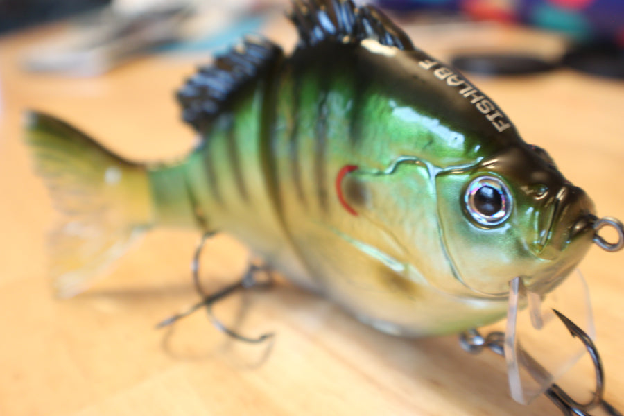 Fishing the Bio-Gill Swimbaits - by Mark Lassagne of Bass Angler Magazine
