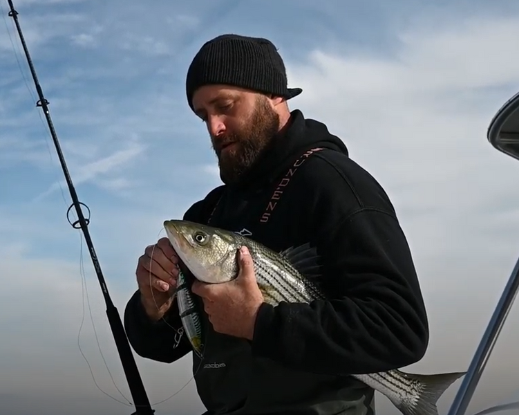 North East Striper Fishing