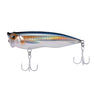 Scrum Popper Bronze Sardine