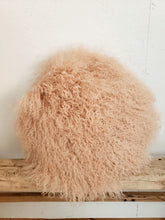 Load image into Gallery viewer, Blush round fur pillow