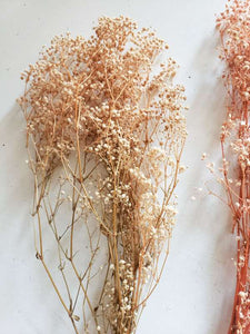 dried baby breath bunch