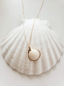 Clam and Clasp Advocate necklace
