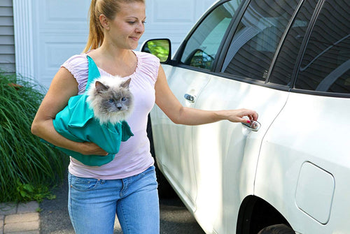 Over-the-Shoulder  Carry Pouch For Cats And Small Dogs