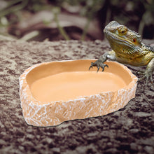 Load image into Gallery viewer, Resin Basin / Bowl For Reptile Habitats