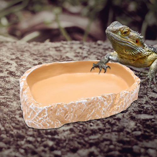 1pcs 12*7.5*2cm Resin Tortoise Bowl Basin No poison Reptiles Feeding Supplies food container feeder dish for tortoise Reptiles