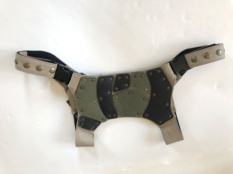Armor Harness