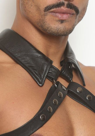 O-Ring Collar Half-Harness