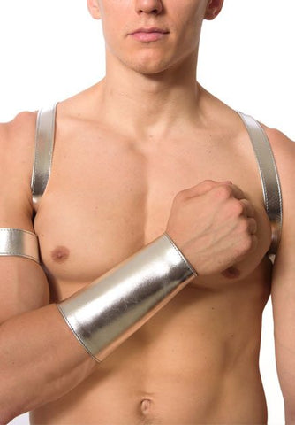 "Silver Leather 1"" Shoulder Half-Harness"