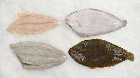 Bottom and top fillets of Dover sole, next to whole fish