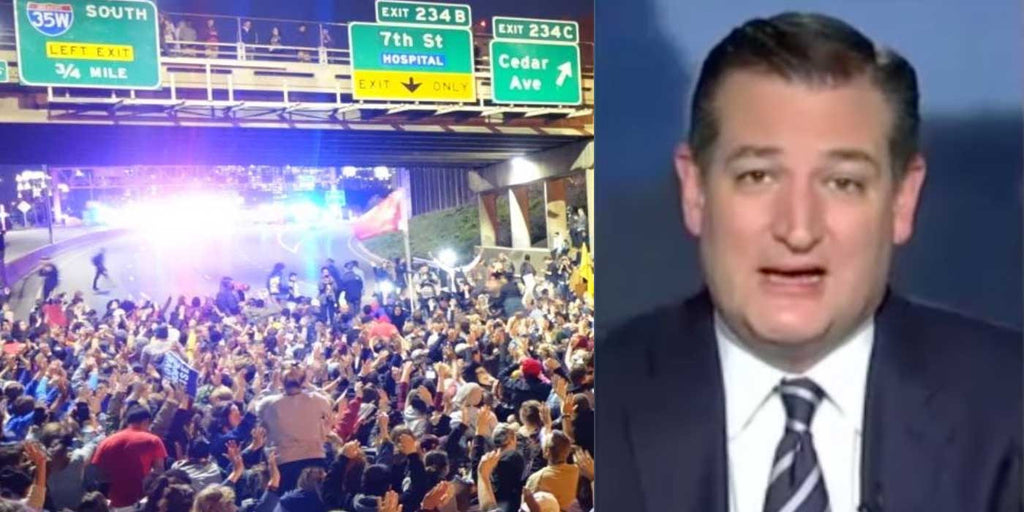 CRUZ: Idiots Rioting In The Street Also Demanded Trump Accept Results