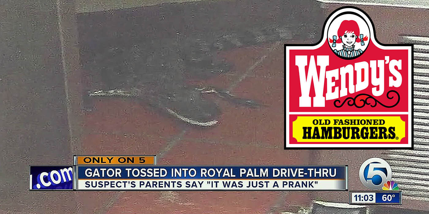 Florida man arrested for throwing alligator into Wendy's drive-thru