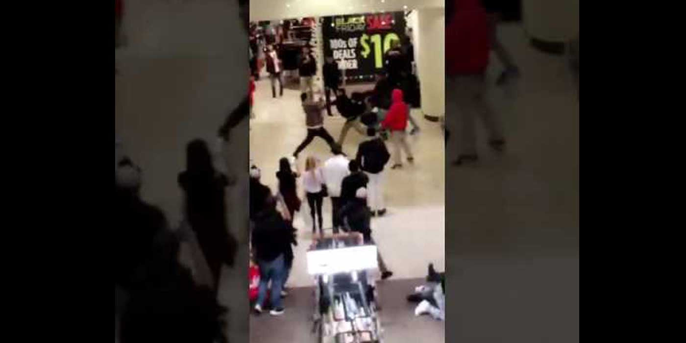 VIDEO: Chaos as Black Friday mall fight gets out of hand (2016)