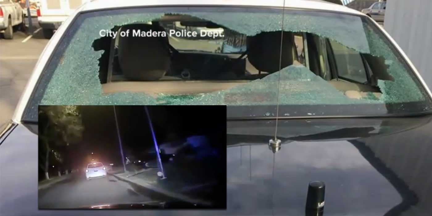 WATCH: Police Ride-Along Goes Horribly Wrong (DASH CAM VIDEO)