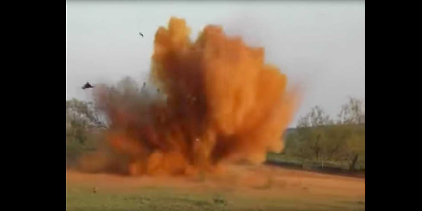 WATCH: Texas Man Uses Explosives To Blow Up Feral Hogs (VIDEO)