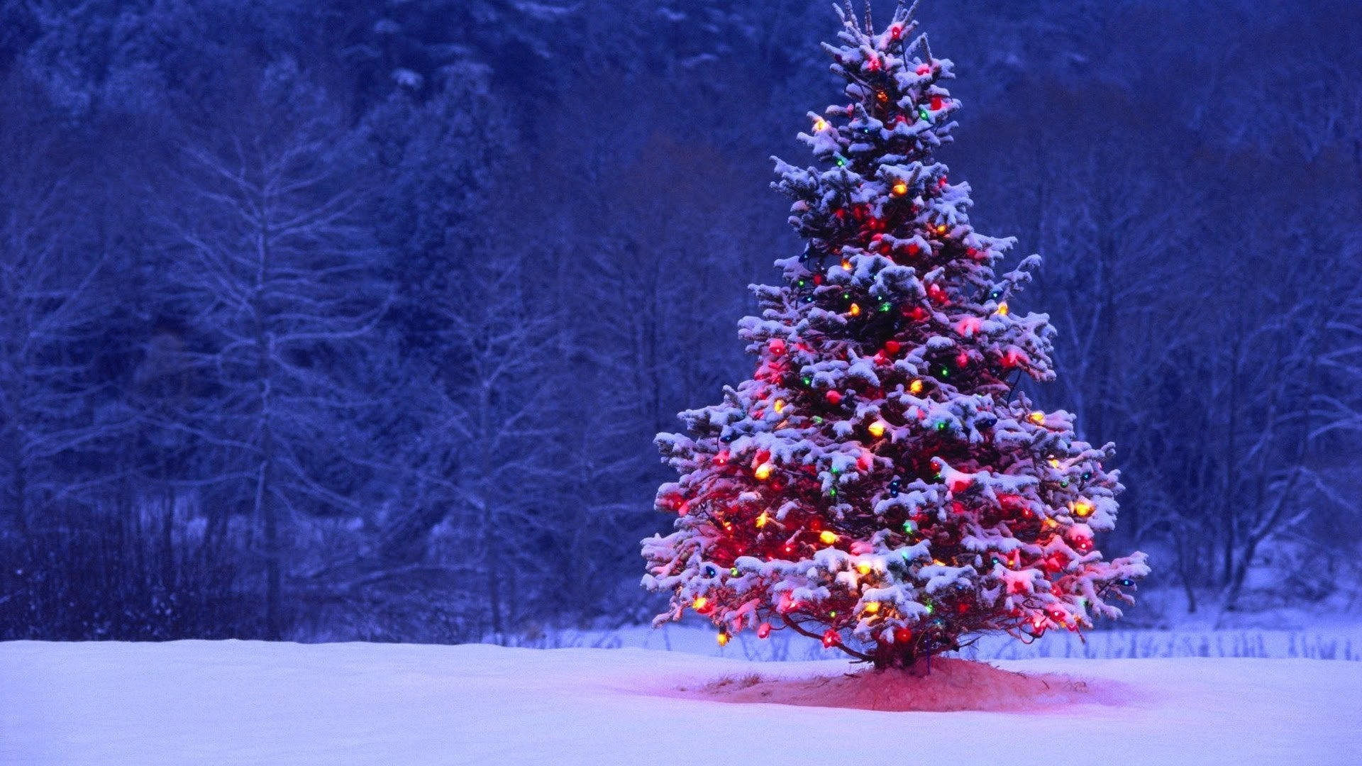 Top Christmas Songs of All Time (LISTEN NOW)