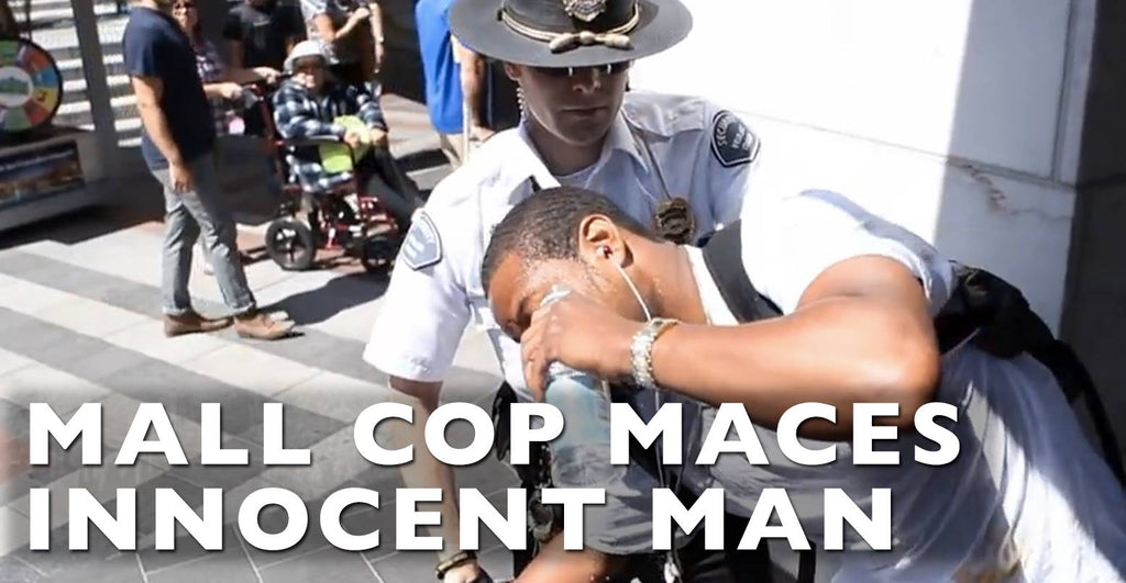 VIDEO: Mall Cop Maces Innocent Man