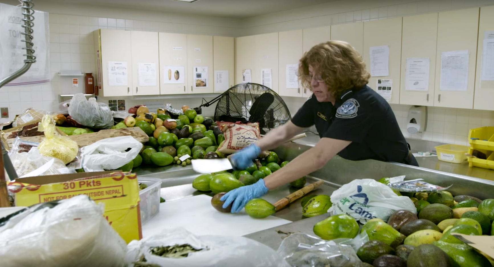 Where Illegal Food Goes to Die (Video)