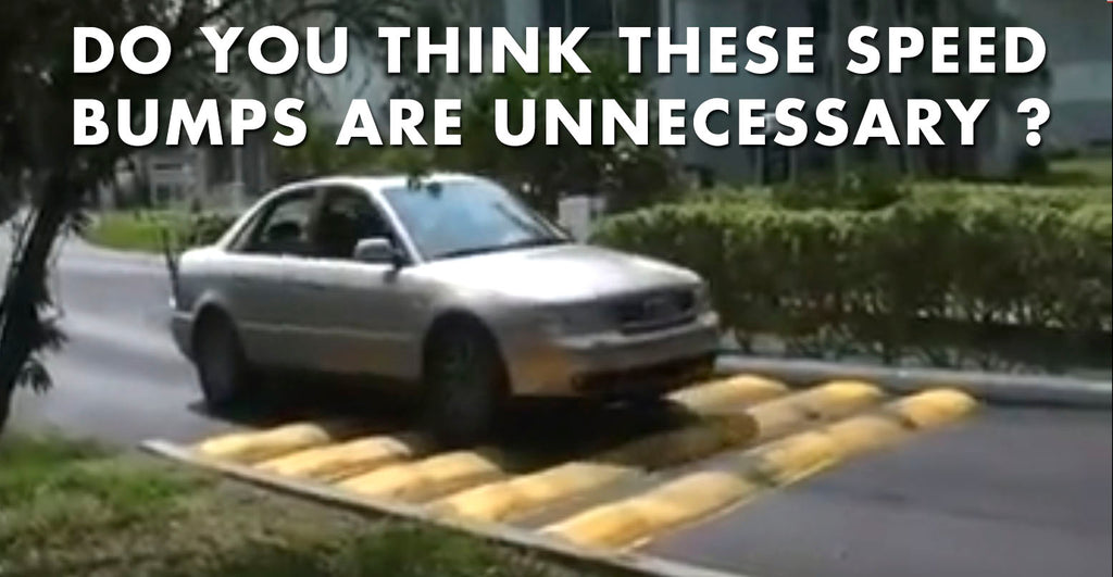 Do You Think These Speed Bumps Are Unnecessary?