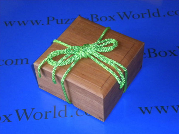 2013 String Box Puzzle by Fumio Tsuburai