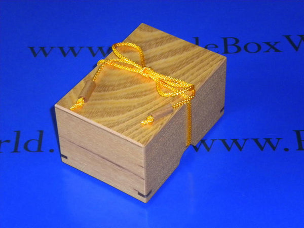 String Box 2010 Puzzle by Fumio Tsuburai