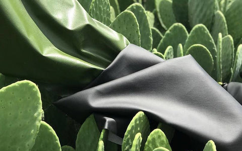 Vegan Cactus Leather from Mexico