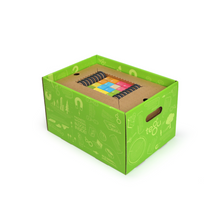 Load image into Gallery viewer, 130-Piece Tegu Classroom Kit - in storage box