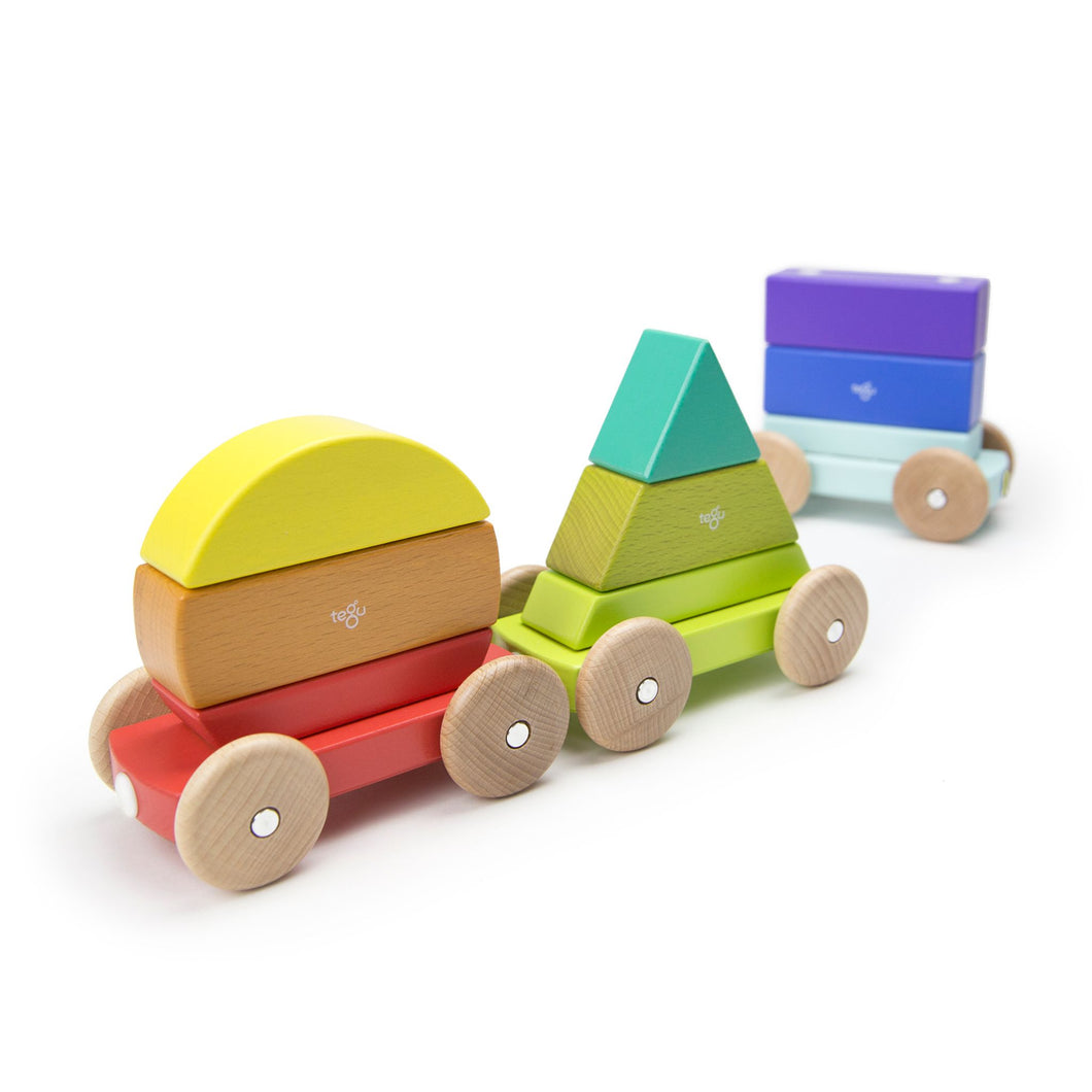 Wooden train from Tegu with magnetic shapes