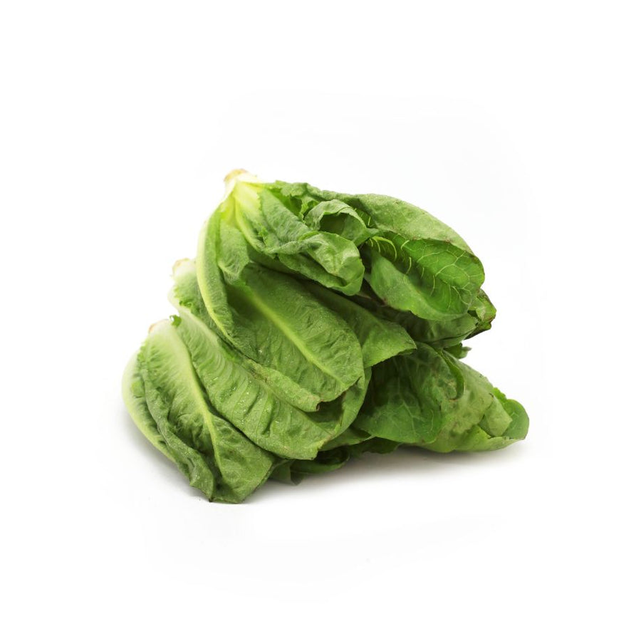 Lettuce Romaine - 1 Pack (250 g)
