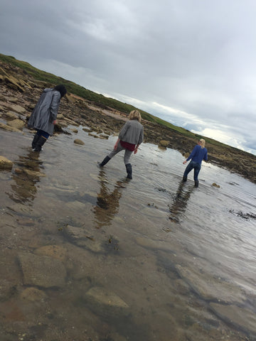Jo and Friends Seaweed Harvesting