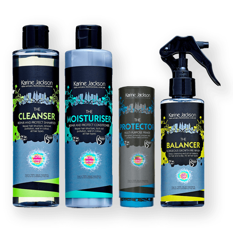 Karine Jackson Repair & Protect Kit