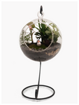 Terrarium with a Hanging Stand