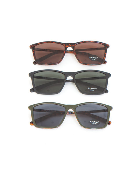 Franklin Sunglasses in Tortoise