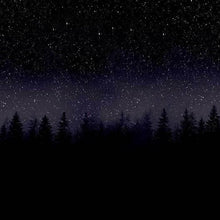 Load image into Gallery viewer, LEGGINGS PRINTED STAR NIGHT AND FIR TREES - Mrs Freaks
