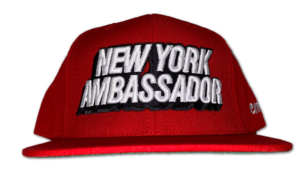 New York Ambassador