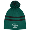 Fly Birds Fly Striped Pom Beanie