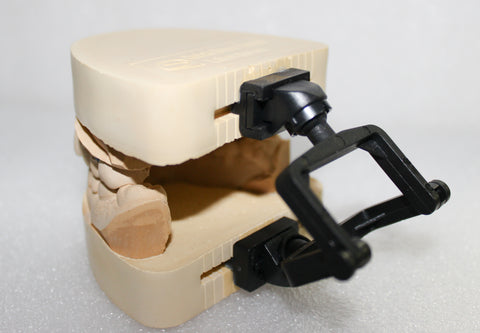3D Disposable Crown & Bridge Articulators