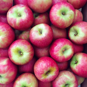 Apples - Pink Lady - The Farm Shop Toowoomba