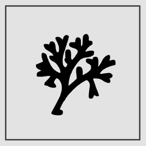 Semink-2 Week Temporary Tattoos-Tree
