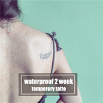 Semink-2 Week Temporary Tattoos-Feather