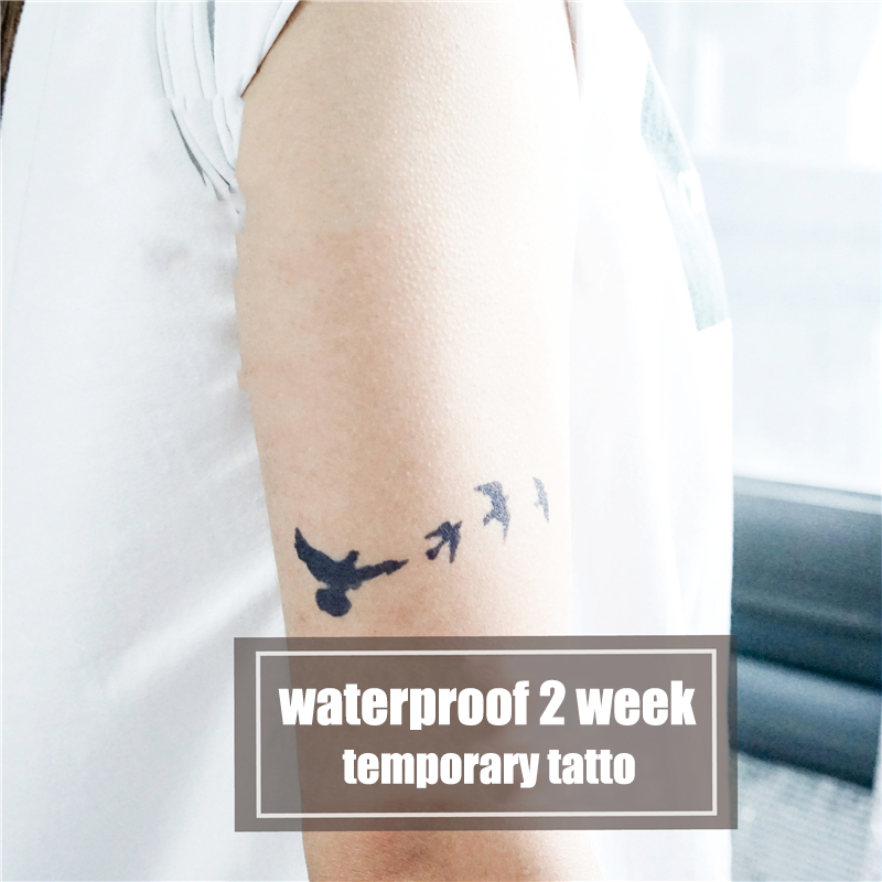 Semink-2 Week Temporary Tattoos-A Flight of Geese Flew Past