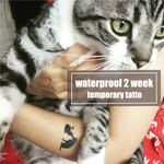 Semink-2 Week Temporary Tattoos-Cats