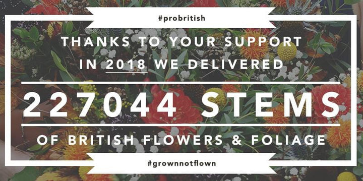 Our 2018 British Stem Count Total!